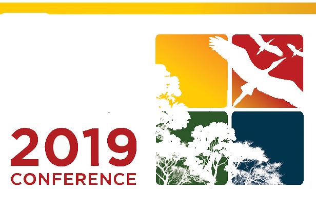 Global Community Engagement: FAUBAI 2019 Conference - Professional